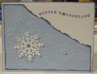 8 17 2010 Winter Wonderland Snowflakes