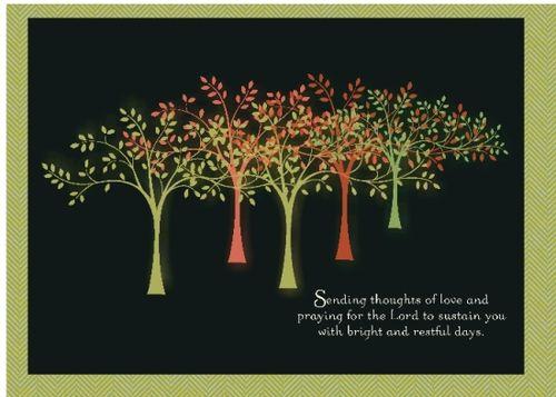 11 4 2010 Tand P Trees-001