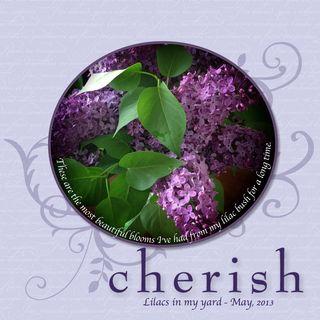 5 9 13 Lilacs-001
